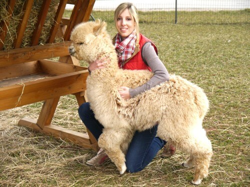 a Anne Rück mit Alpaka (2)
